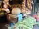 ガリシア 野菜