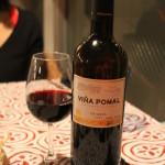 ア エスピリトロンパ 赤ワイン