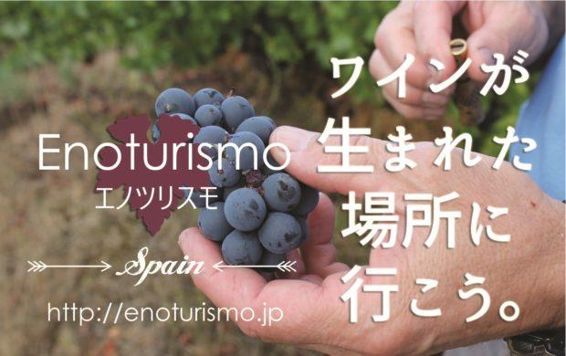 スペインワイン観光 エノツリスモ