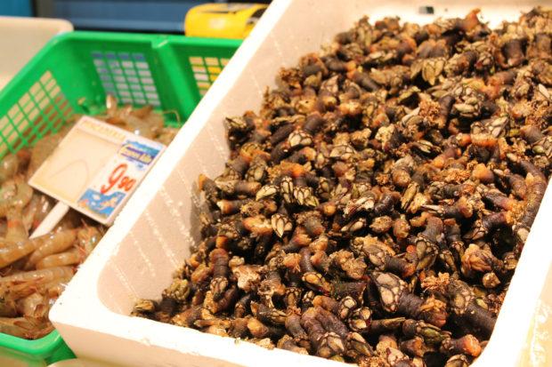 ビルバオ 市場 亀の手