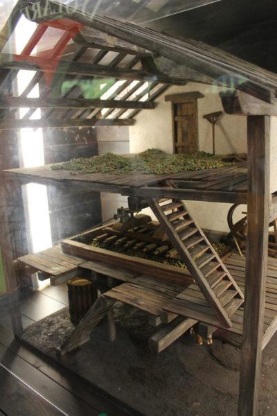 バスク シードラ博物館