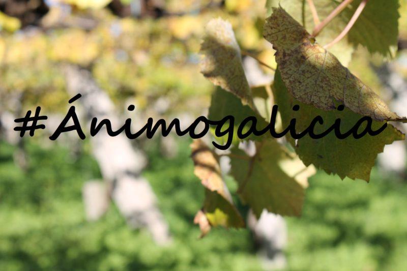 animogalicia